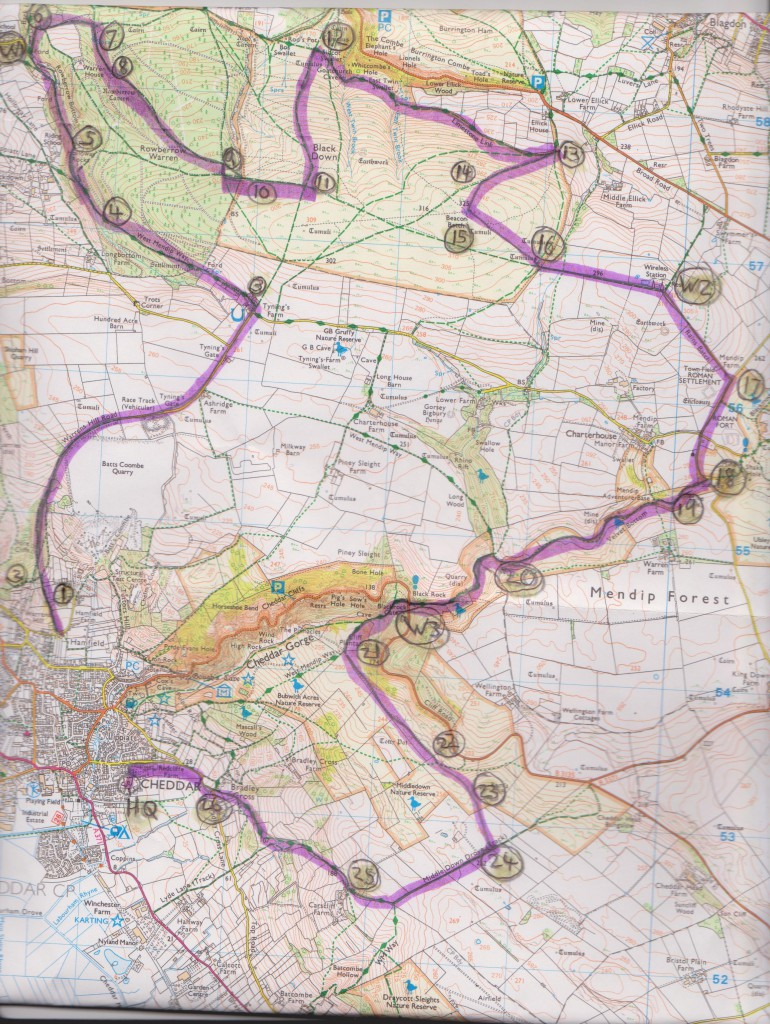 Big Cheese 2015 Course Map